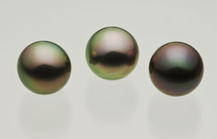 12.5mm Tahitian Black Pearls of exceptional quality. The pair to the left exhibit a peacock overtone, the gem to the right is a delicate rose pink over a slightly darker almost black hued pearl.. Inventory #10596
